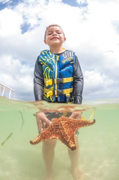 Grand Cayman Starfish Beach best things to do on grand cayman