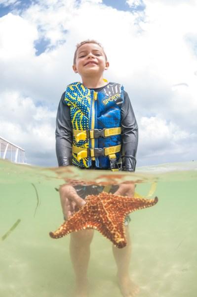 Grand Cayman Starfish Beach best things to do on grand cayman