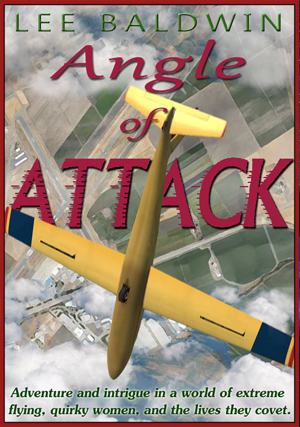Angle of Attack ~ An Adventure in Aviation, Love, and Crime