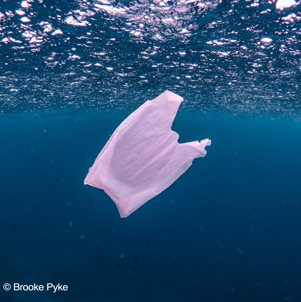 Plastik di lautan