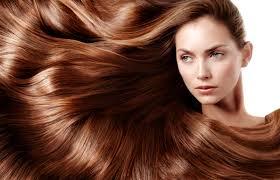 major model shampoo argentina
