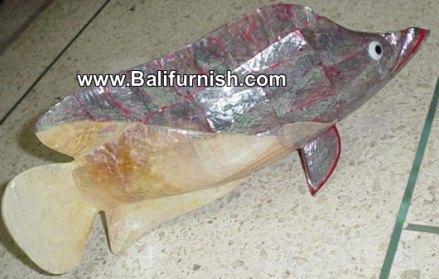 fish shell carvings
