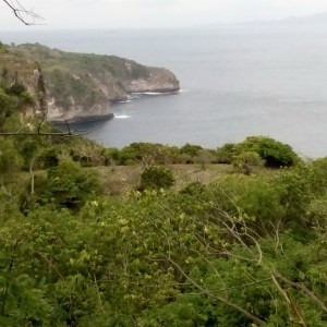 Beach front Land 50,000 qm for sale in Nusa Penida Island Bali