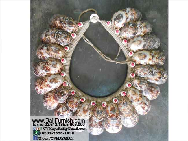 papua-sea-shell-necklaces-pap6315