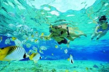 bali-snorkeling