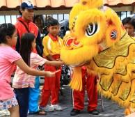 chinese-new-year61553121