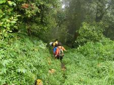 tamblingan-jungle-adventure