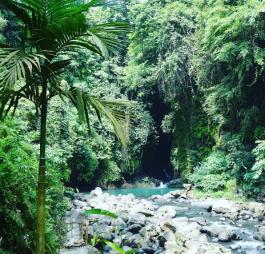 visiting-blue-lagoon-sacred-garden-nature-swiming-pool-sambangan-trekking-with-local-guide