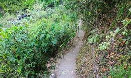 Hiking route to sekumpul waterfalls
