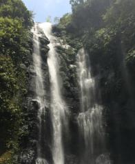 Trip to sekumpul waterfalls