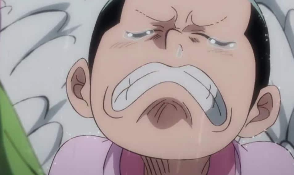 Nonton One Piece Episode 980 Sub Indo Streaming iQIYI