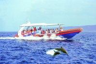 3 Island Ocean Rafting – Griyasari Tours & Travel