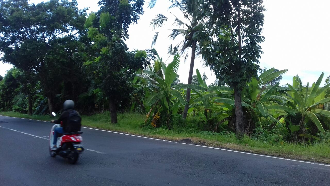 Land 4600 sqm for 25 years Lease in Umalas Seminyak Bali