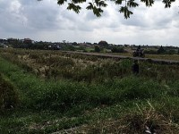 Land 1382 m2 LCGU 138 for sale in Canggu Bali
