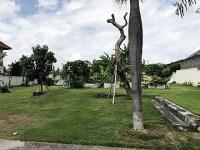 Land 1000m for lease 25 years in Umalas Seminyak Bali
