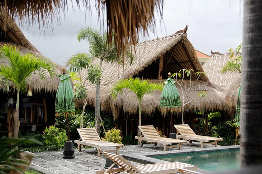 Canggu hotel calmtree - 365 days in Paradise
