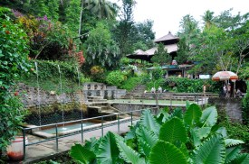 Air Panas Hot Springs, Banjar, Bali © Mariska Richters