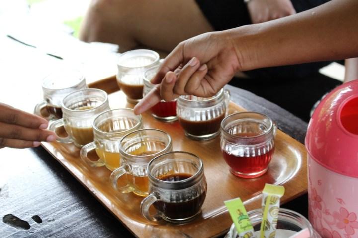 Degustation café Tabanan Balisolo (18)