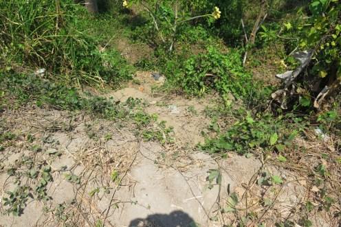 Gorge de Guwang à 30 minutes de Denpasar avec Youdi, Guide Balisolo 2015 (34)