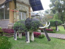 Le jardin botanique de Bali - Bali Botanic Garden - Bedugul - Balisolo (29)
