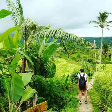 Christian Sura, guide francophone à Bali Sulawesi - Balisolo (9)