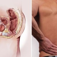 HEALTHY TIPS: Early Warning Signs of Prostate Cancer Men Should Not Ignore