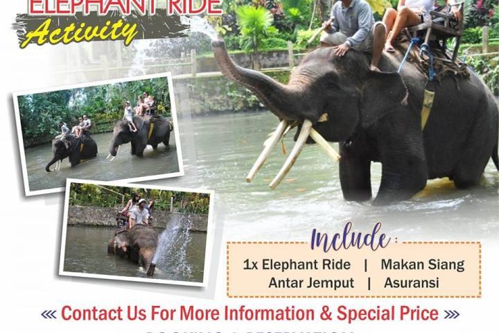 naik gajah di bali