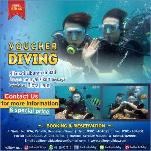 Voucher Diving