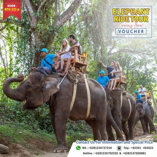 Bali Elephant Ride Tour