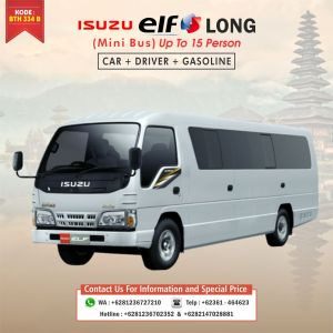 Isuzu Elf Long Van