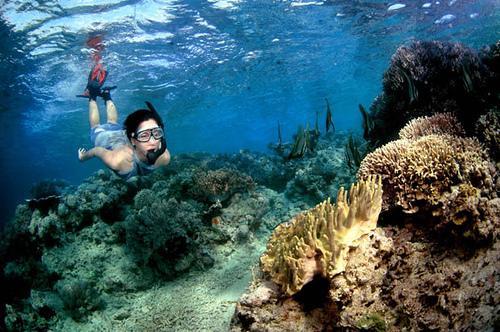 Bali-Natural-Menjangan-Island1