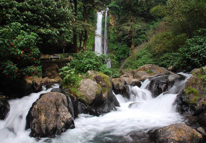 The Freshness of Bathing in the Gitgit Waterfall in Bali