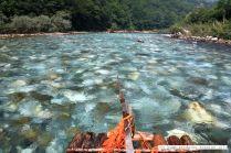 Mit einem Floß am Fluß Drina entlang fahren…