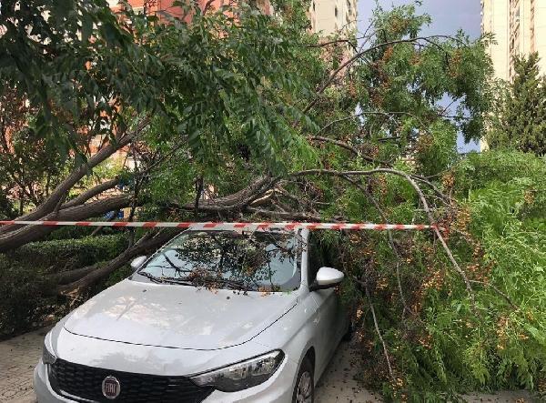 İzmir'de fırtına etkili oldu