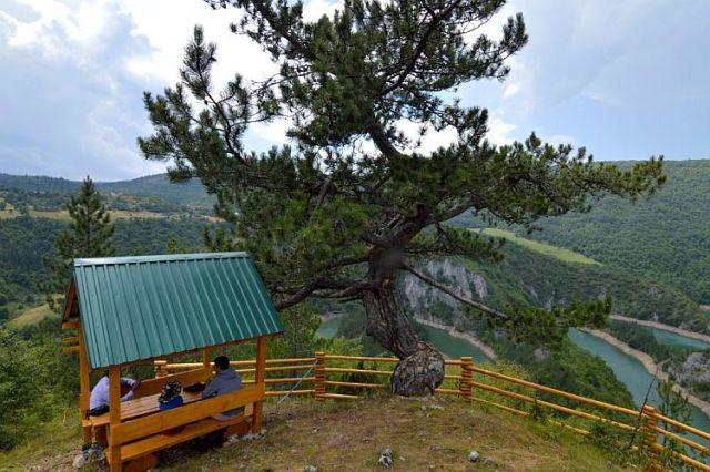 Смотровая площадка над каньоном реки Чехотина. Фото: cdm.me