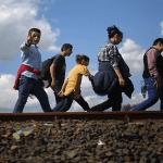 U Srbiju dnevno uđe do 100 migranata