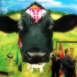 Potpisan ugovor o prodaji PKB: Od sad Arapi snabdevaju Srbe mlekom