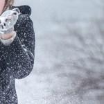 U Srbiji u petak hladno i oblačno, uz slab sneg