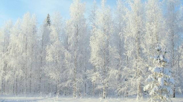 Upozorenje RHMZ: Sutra jak mraz, u sredu ledena kiša