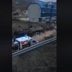 Stravična nesreća u Makedoniji, 13 mrtvih (VIDEO)
