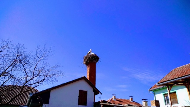 Vremenska prognoza – 24. mart: Sunčano i toplo