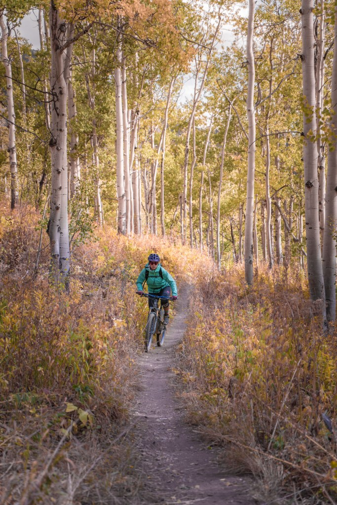 mountain biker aspens 401 trail crested butte colorado
