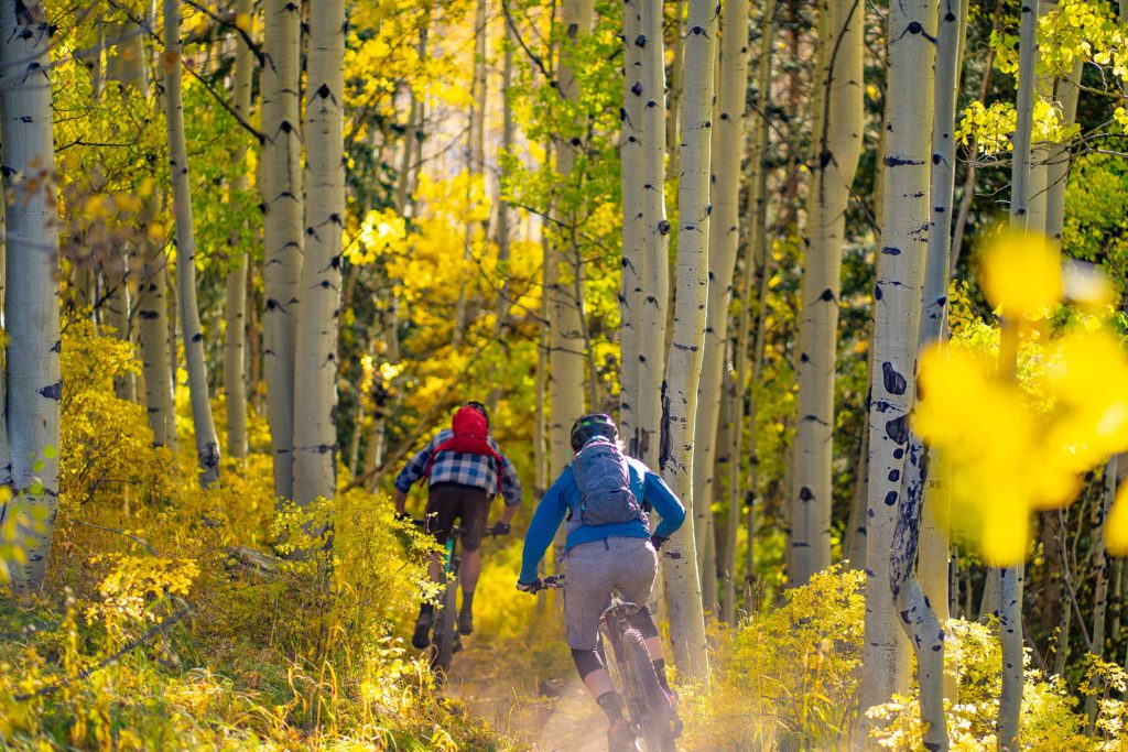 fall mountain biking trail etiquette