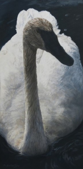 "Close Encounter 12"" x 24"" Acrylic on Canvas - Price on Request"