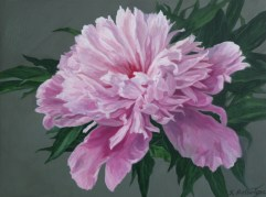 "Peony #3 Acrylic on Panel 4.5""X 6""X 1.5"" SOLD"