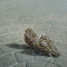 """Fledgling Sparrows"" 10"" X 10"" Oil on Hardboard, price on request."