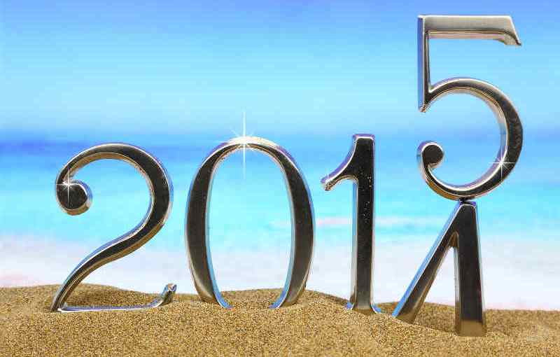 2015 The year ahead…..