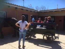 horse riding-spain-ballard school