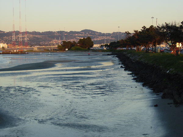 Job 86 – Bay Bridge Oakland Touchdown Geofill