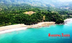 Playa Arco - Uvita - Costa Rica  - Photo by Dagmar Reinhard